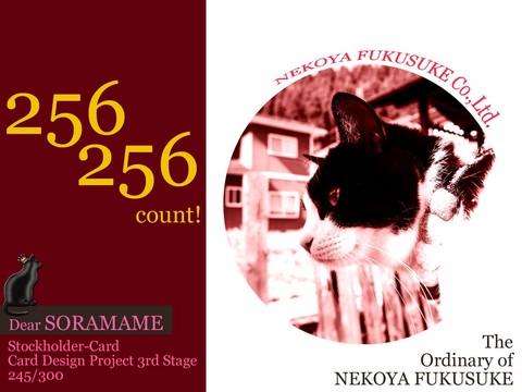 256256count.jpg