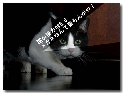 DSCF3901.jpg