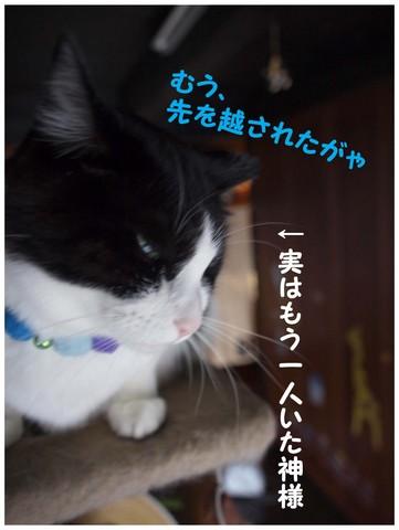 バベル-4.jpg