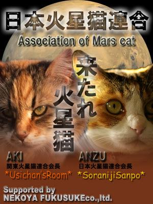 火星猫のコピー.jpg