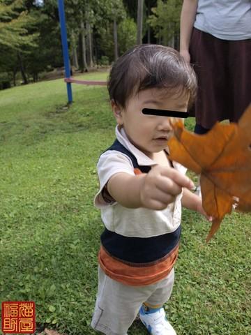 秋、落ちてましたよ.jpg