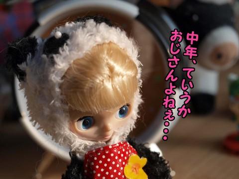 P4292012.jpg