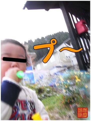R0010856.jpg